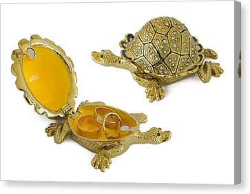 Turtle - Metal  Box For Jewelry Canvas Print