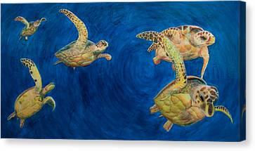 Turtles Canvas Print by Julia Collard