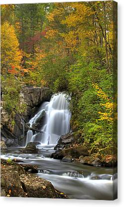 Turtletown Creek Falls Canvas Print by Debra and Dave Vanderlaan