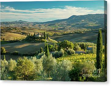 Tuscan Afternoon Canvas Print