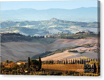 Tuscan Farm House, Vineyard At Sunrise Canvas Print by Michal Bednarek