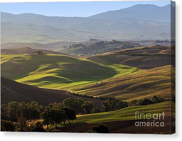 Tuscan Farm House, Vineyard, Green Hills Canvas Print by Michal Bednarek