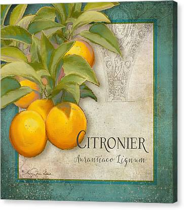 Tuscan Orange Tree - Citronier Aurantiaco Lignum Vintage Canvas Print