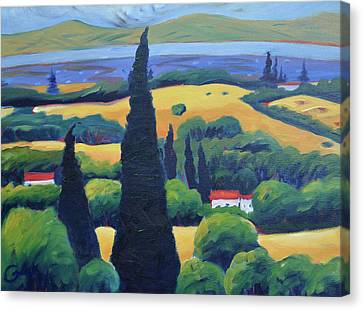 Tuscan Pines And South Bay Canvas Print by Gary Coleman