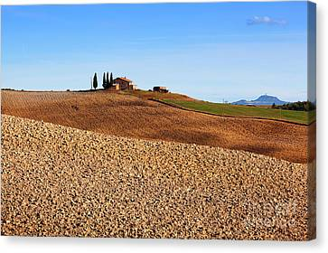 Tuscany Landscape Canvas Print by Michal Bednarek