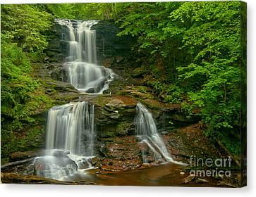 Tuscarora Falls Landscape Canvas Print