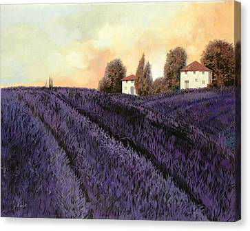 Tutta Lavanda Canvas Print by Guido Borelli