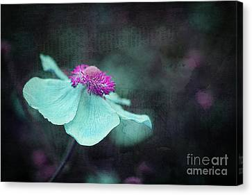 Flora Canvas Print - Tutu - Ra2c16t3 by Variance Collections