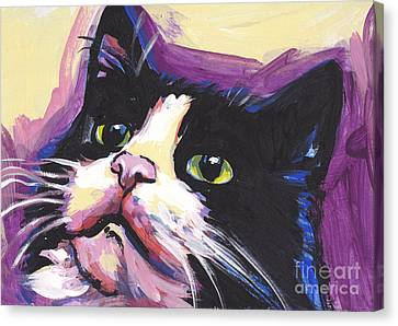 Tuxedo Cat Canvas Print by Lea S