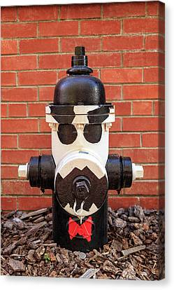 Canvas Print featuring the photograph Tuxedo Hydrant by James Eddy