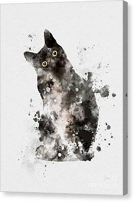 Tuxedo Canvas Print by Rebecca Jenkins