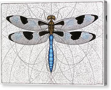 Twelve Spotted Skimmer Canvas Print by Charles Harden