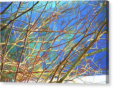 Twiggy Canvas Print by Cheryl Rose
