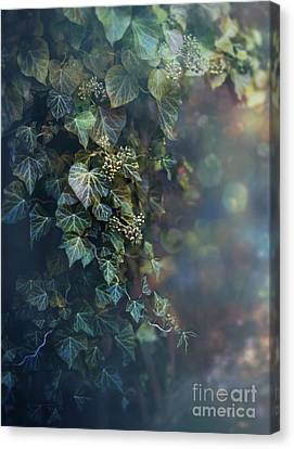 Twilight And Shadow Canvas Print