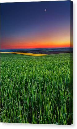 Twilight Fields Canvas Print by Evgeni Dinev