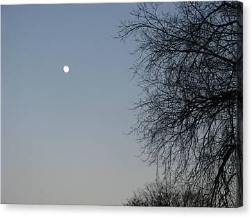 Twilight Canvas Print by Hasani Blue