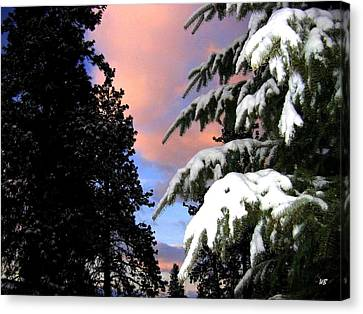 Twilight Hour Canvas Print by Will Borden