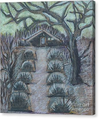 Canvas Print featuring the drawing Twilight In Garden, Illustration by Ariadna De Raadt