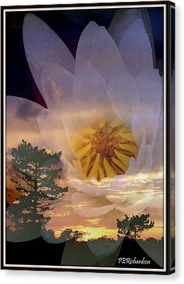 Twilight Lily Canvas Print by Priscilla Richardson