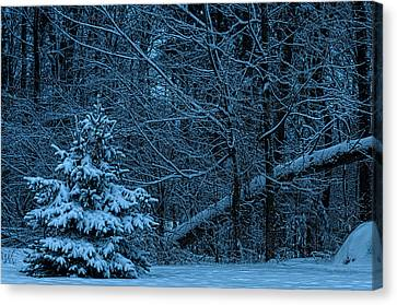 Twilight Snow Canvas Print by Trey Foerster