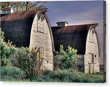 Twin Barns, Nisqually, Wa Canvas Print by Greg Sigrist