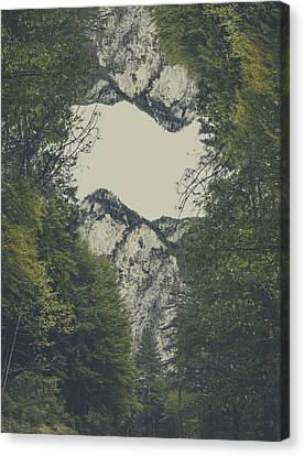 Twin Peaks Canvas Print by Thubakabra