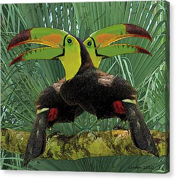 Twin Toucans Canvas Print by Larry Linton