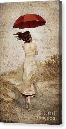 Twirling Painted Lady Canvas Print