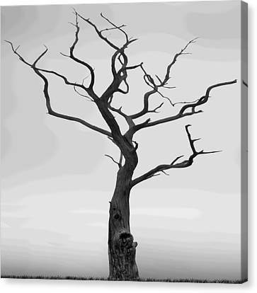 Twisted Canvas Print by Mike McGlothlen