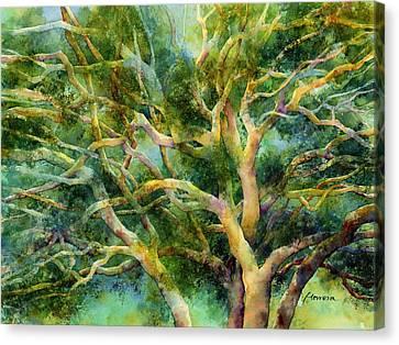 Twisted Oak Canvas Print by Hailey E Herrera