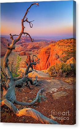 Monument Valley Canvas Print - Twisted Remnant by Inge Johnsson