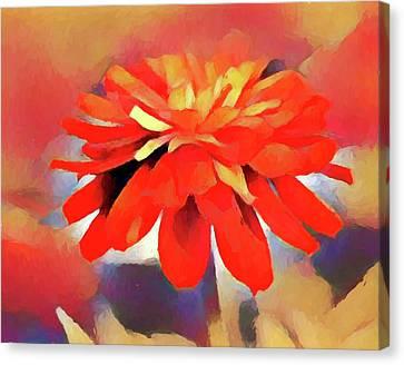 Twisted Tangerine Canvas Print by Shae Aja