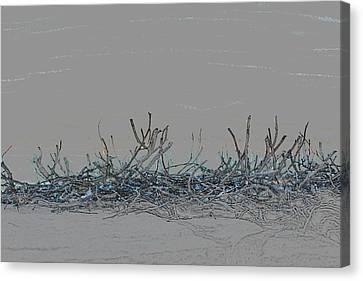 Canvas Print featuring the digital art Twisted Vines by Ellen Barron O'Reilly