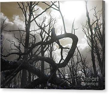 Twisted Wood Canvas Print by The Rambler