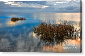 Two Alone In Pamlico Sound I Canvas Print by Dan Carmichael