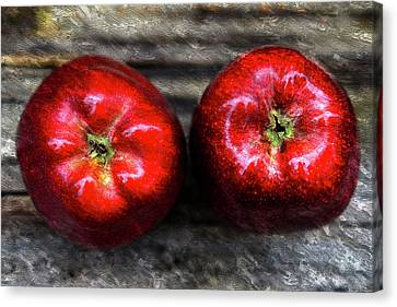 Two Apples On Table Oil Painting Canvas Print