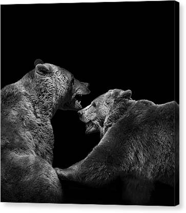Two Bears In Black And White Canvas Print by Lukas Holas