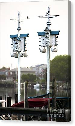 Canvas Print featuring the photograph Two Birdhouses by John Rizzuto