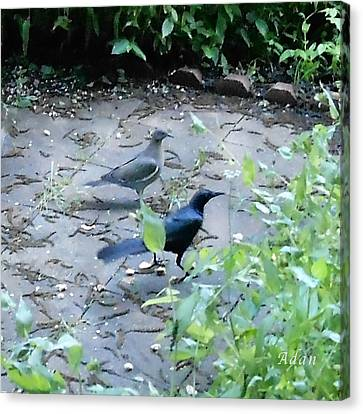 Canvas Print featuring the photograph Two Birds by Felipe Adan Lerma