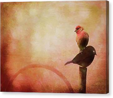 Two Birds In The Mist Canvas Print by Bellesouth Studio