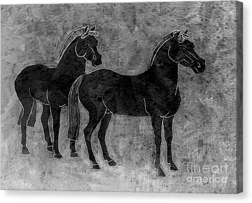 Two Black Chinese Horses Canvas Print