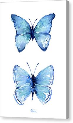 Two Blue Butterflies Watercolor Canvas Print by Olga Shvartsur