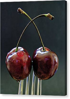 Two Cherries Are Better Than One Canvas Print by Maggie Terlecki