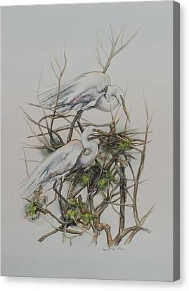 Two Egrets In A Tree Canvas Print