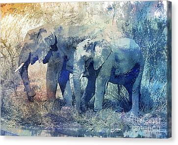 Two Elephants Canvas Print by Jutta Maria Pusl