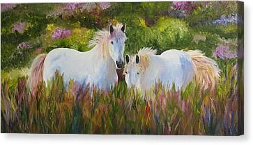 Two Friends Canvas Print by Mary Jo Zorad