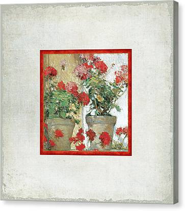 Dappled Light Canvas Print - Two Geranium Pots by Audrey Jeanne Roberts