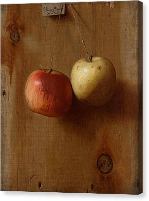 Two Hanging Apples Canvas Print
