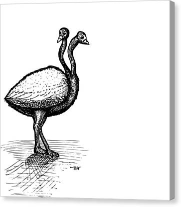 Two Headed Ostrich Canvas Print by Karl Addison