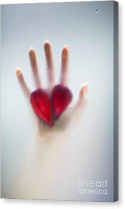 Drop Canvas Print - Two Hearts by Svetlana Sewell